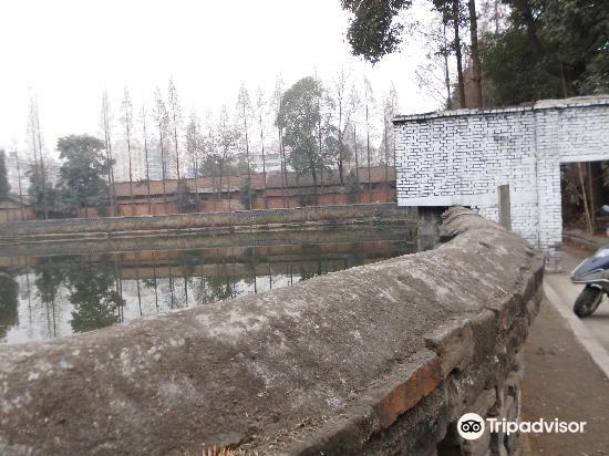 Yinma Pool3