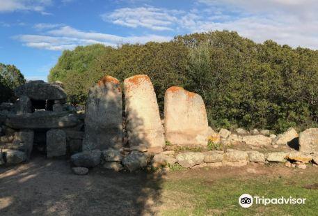 Tomba dei Giganti Su Monte 'e S'Abe