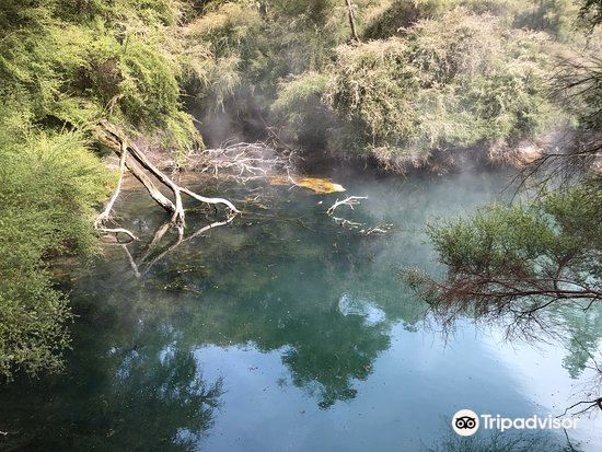 Tokaanu Thermal Pools1
