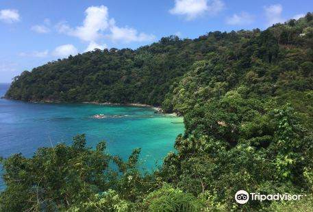 Pirate's Bay