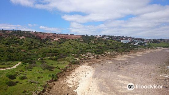Hallett Cove Conservation Park1