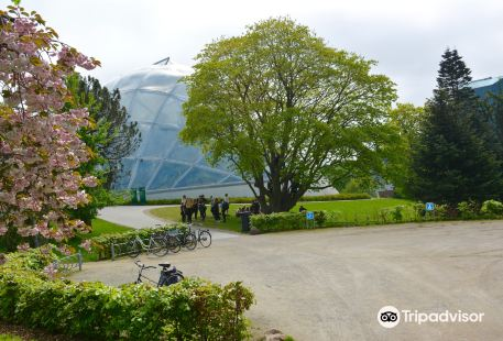 Botanical Garden and the Greenhouses