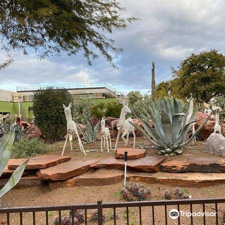 仙人掌植物園4