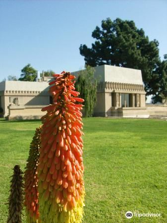 Hollyhock House4
