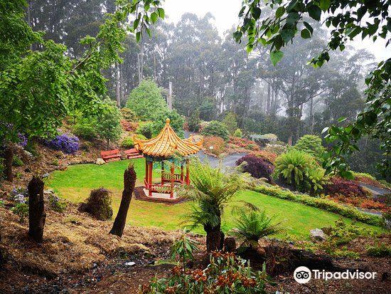 Emu Valley Rhododendron Garden2