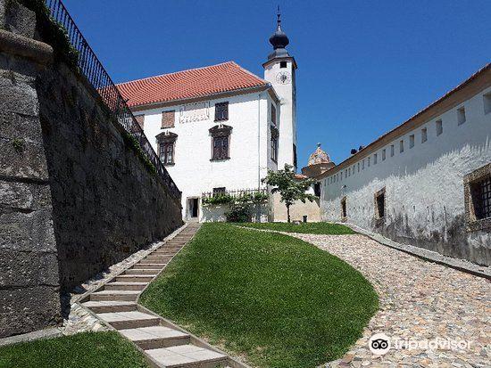 Ptuj Castle (Ptujski Grad)4