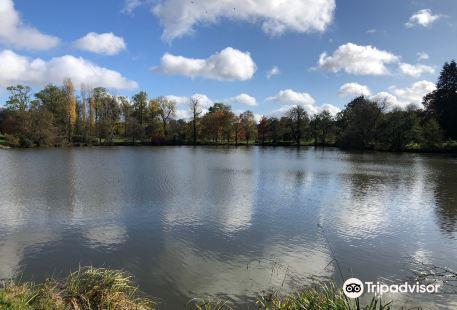 Arboretum de Versailles-Chevreloup