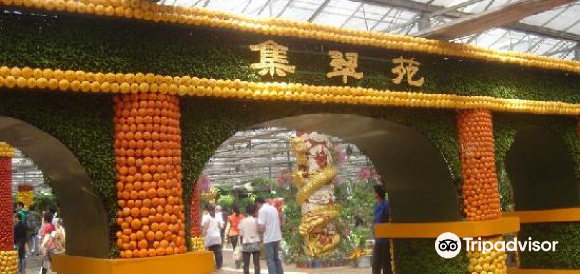 Shouguang