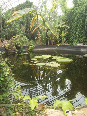 Ventnor Botanic Garden4