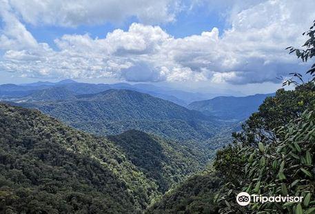 Gunung Brinchang