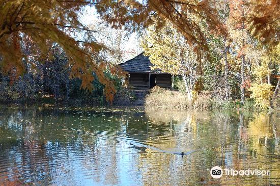 San Antonio Botanical Garden1