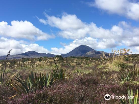 Mount Ngauruhoe1
