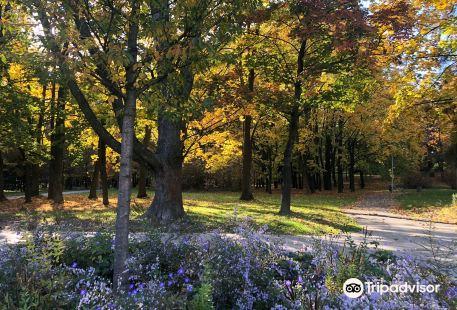 Park Lotnikow Polskich