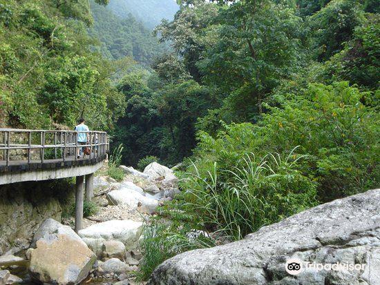三疊井森林公園1
