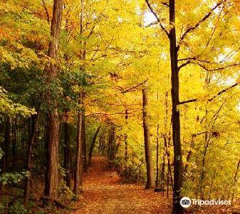 Niagara Parks Garden Trail