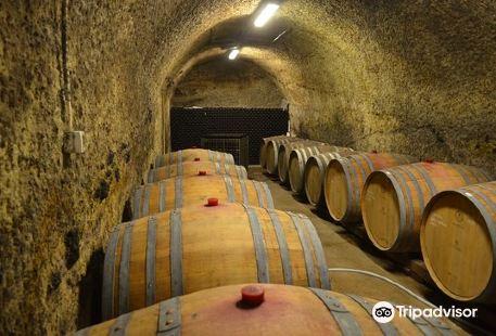 St. Andrea Pinceszet Winery