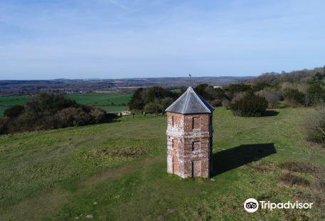 National Trust - Pepperbox Hill