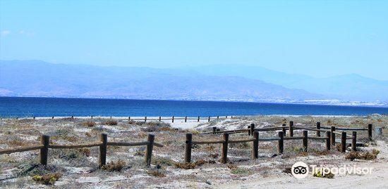Playa San Miguel1