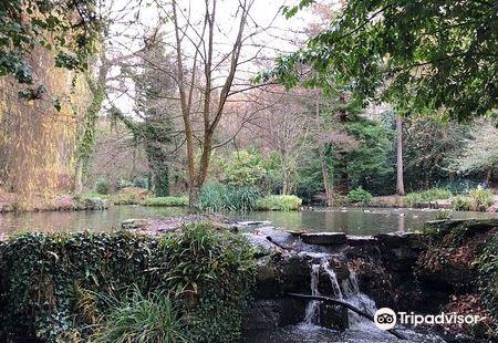 Holly Hill Woodland Park
