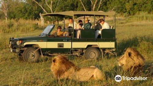 Safari Kenya Tanzania
