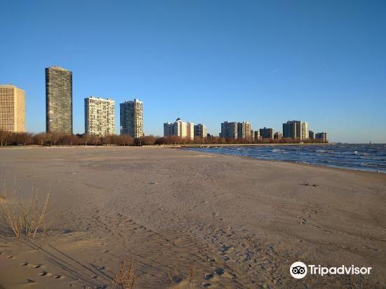 Foster Avenue Beach3
