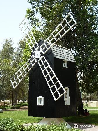 Mushrif Park2