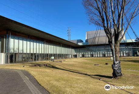 Kani Public Art Center