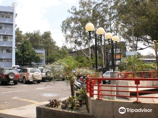 Universidad de Costa Rica1