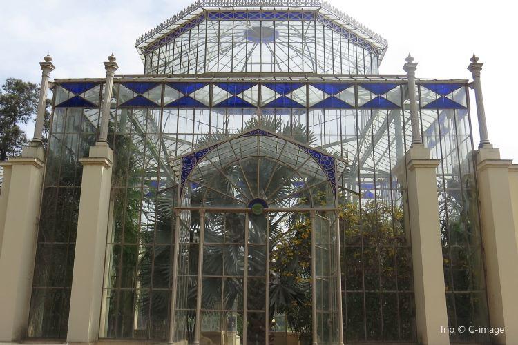 Adelaide Botanic Garden4