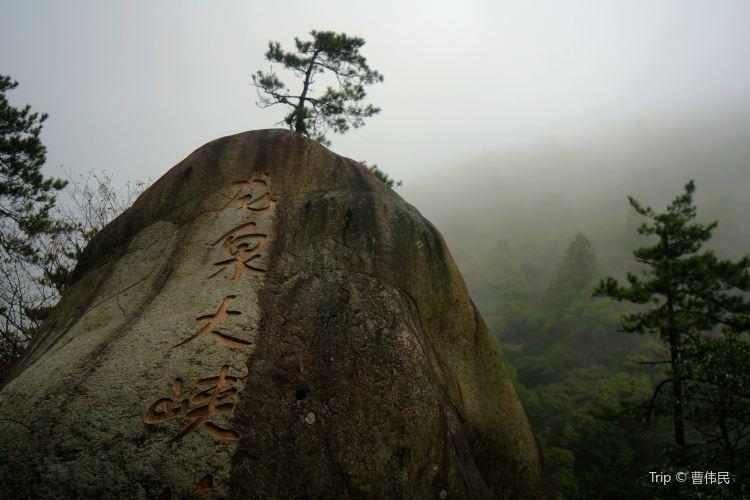 鳳陽山自然保護區2
