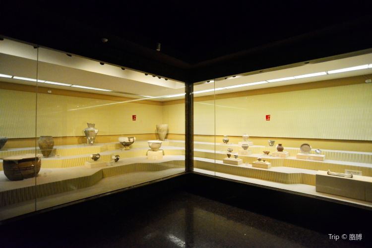 삼성퇴박물관4