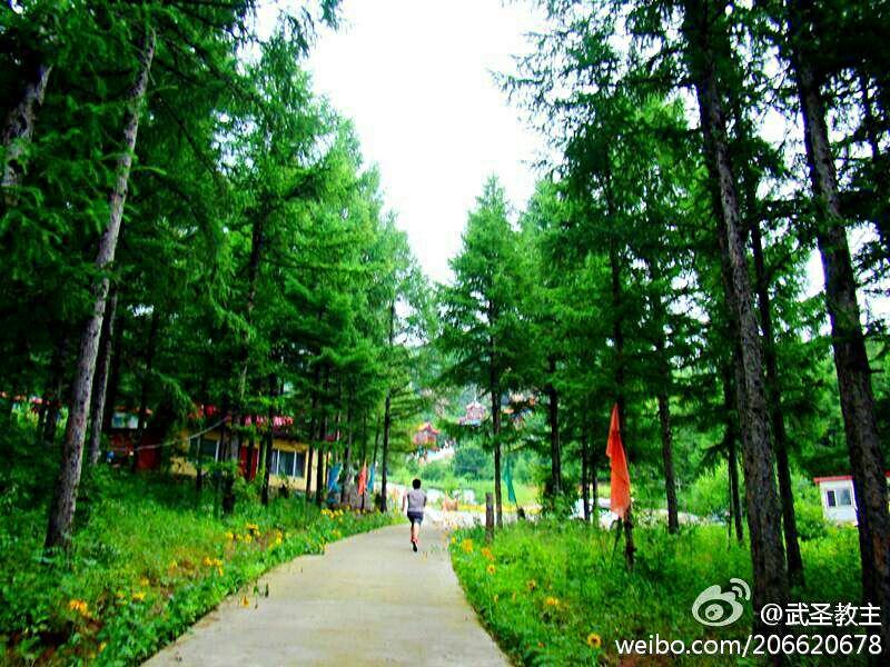 Yingjie Scenic Area