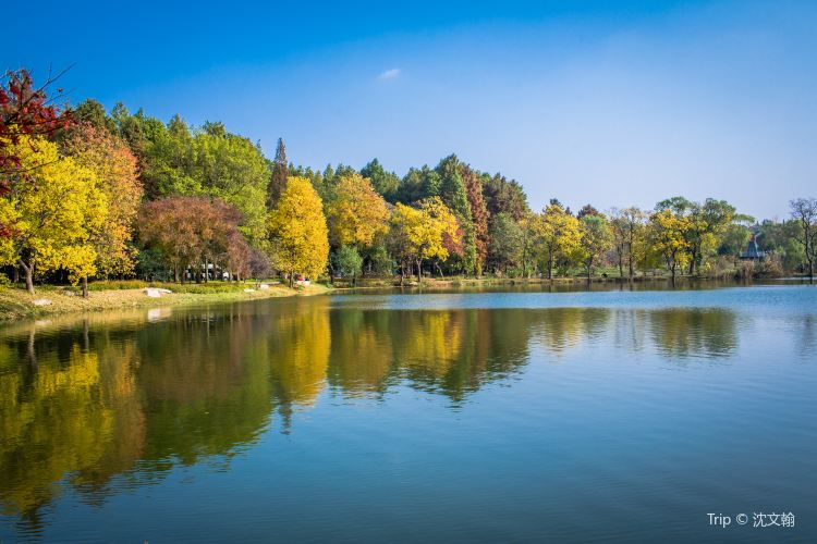 中山植物園3