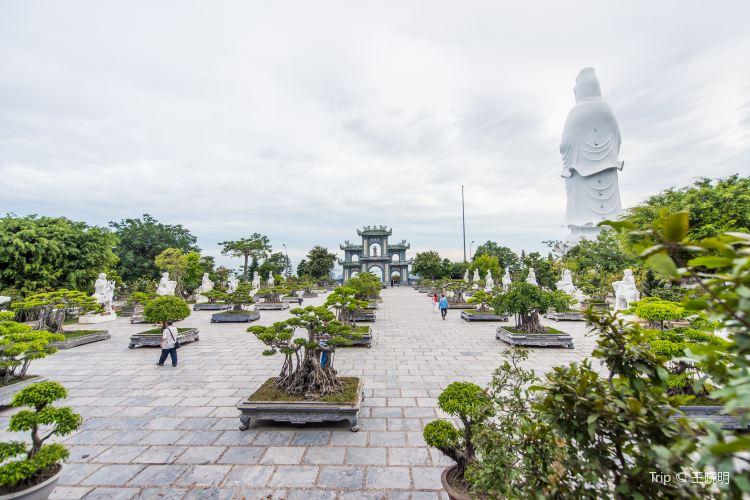 Linh Ung Pagoda1