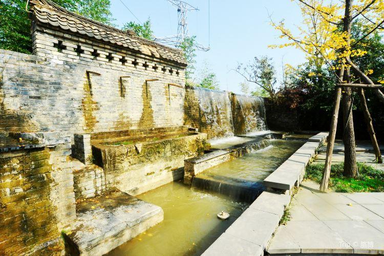 Shahe Wetland Park2
