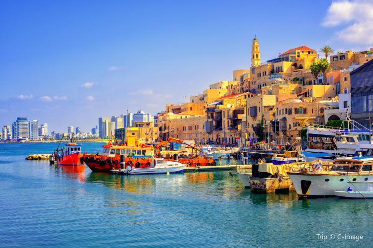 Tel Aviv Port3