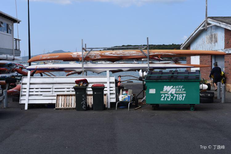 Auckland Sailing Club2