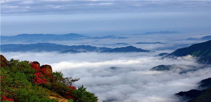 蓮峰雲海景區2