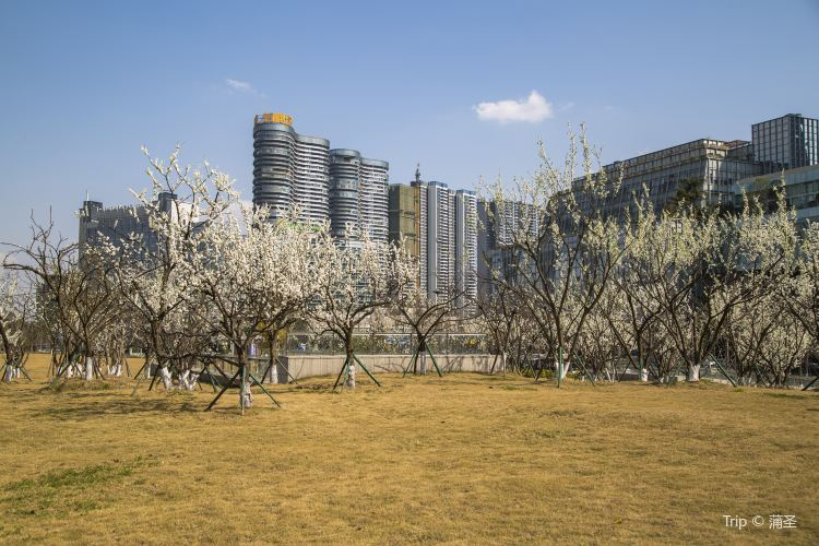 桂溪生態公園1