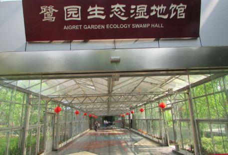鷺園生態濕地館