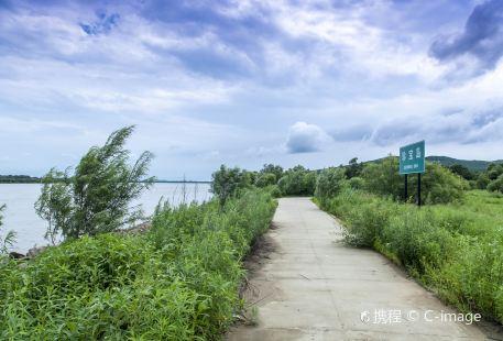 Treasure Island Wetland Park
