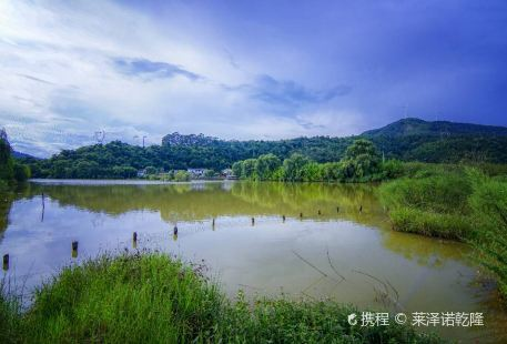 The Golden Tanglang River Scenic Zone