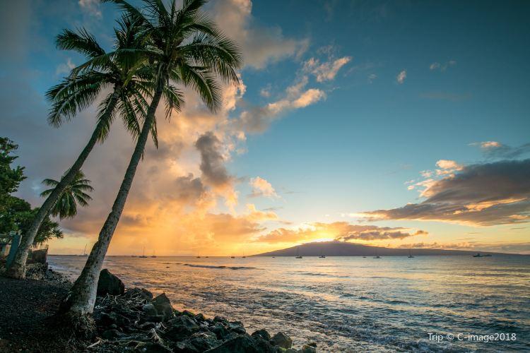 라나이 섬1