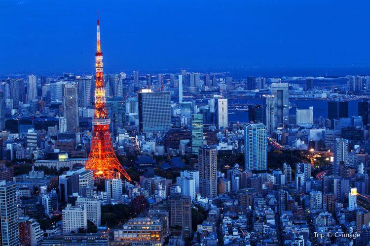 Tokyo Tower3