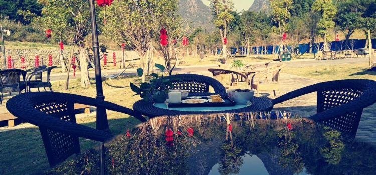 黃姚汽車旅遊營地