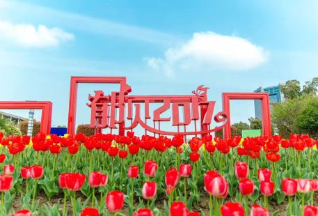 Tulip Theme Park