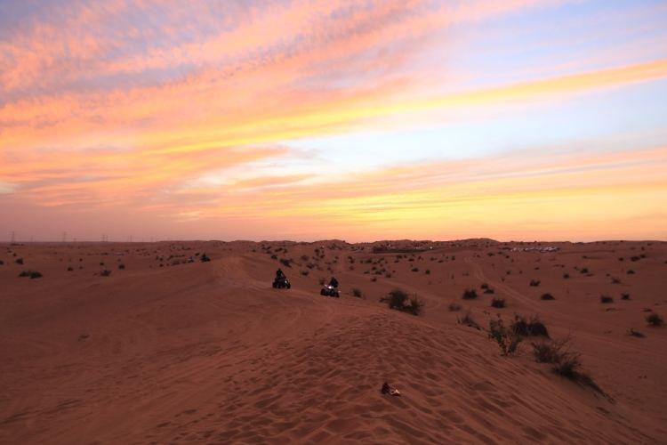 Sharjah Desert Park2