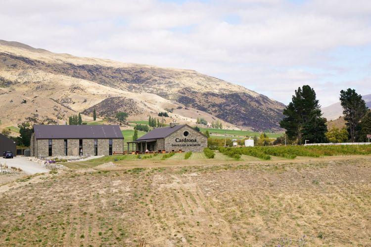 Crown Range Road4