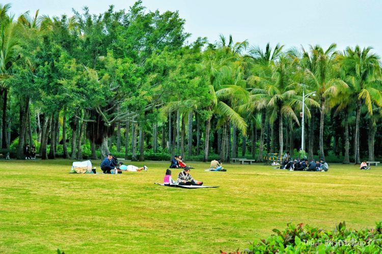Shenzhen Mangrove Nature Reserve3