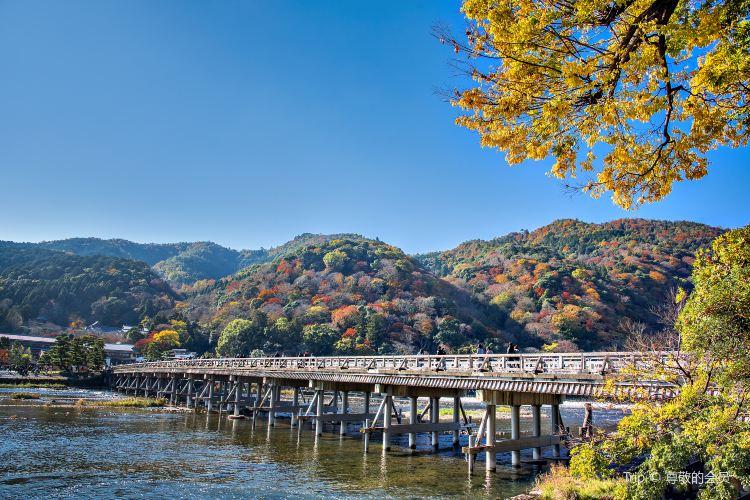 Kamo River2